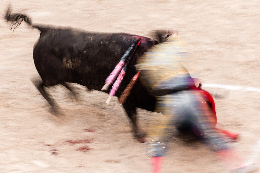 Corrida